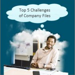Top 5 Company File Challenges for professional services companies